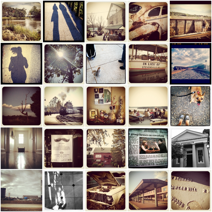 Brown Instragram Photographs - Annapolis Photographer's Favorite Things