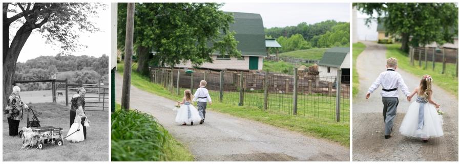 Horse Farm wedding photograph - Davidsonville Country Farm Wedding Photographer