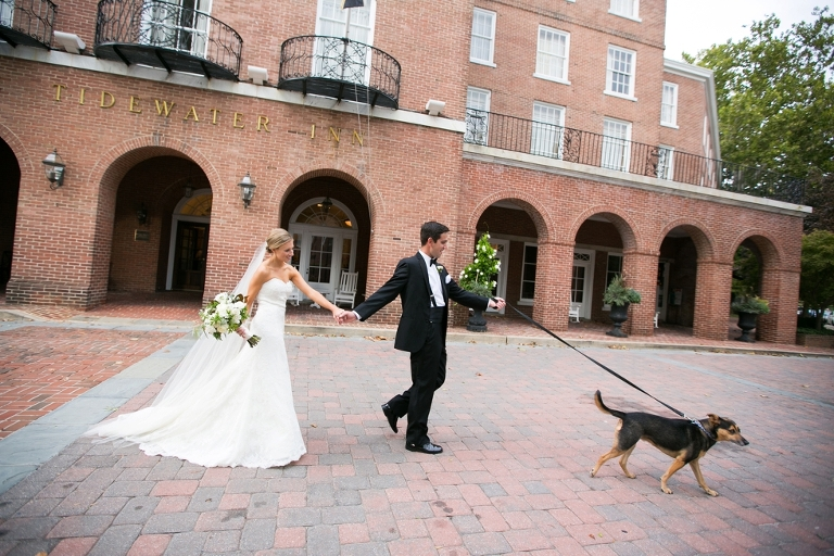 Tidewater Inn Wedding - Philly Weddings with Dogs