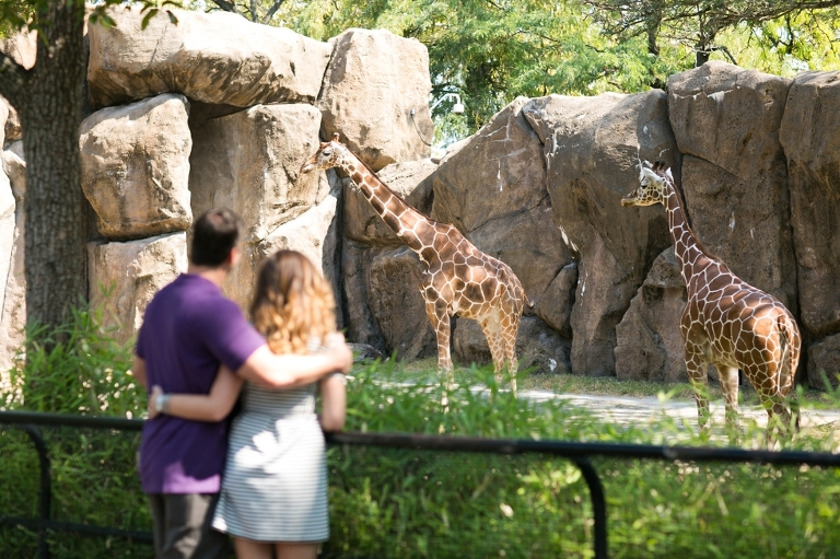 Philadelphia Zoo Anniversary Photographer