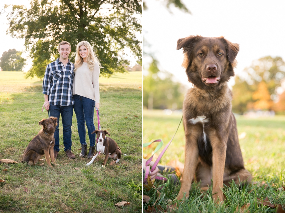 Destination Engagement Photographer in Philadelphia PA - Engagement Session with Dogs