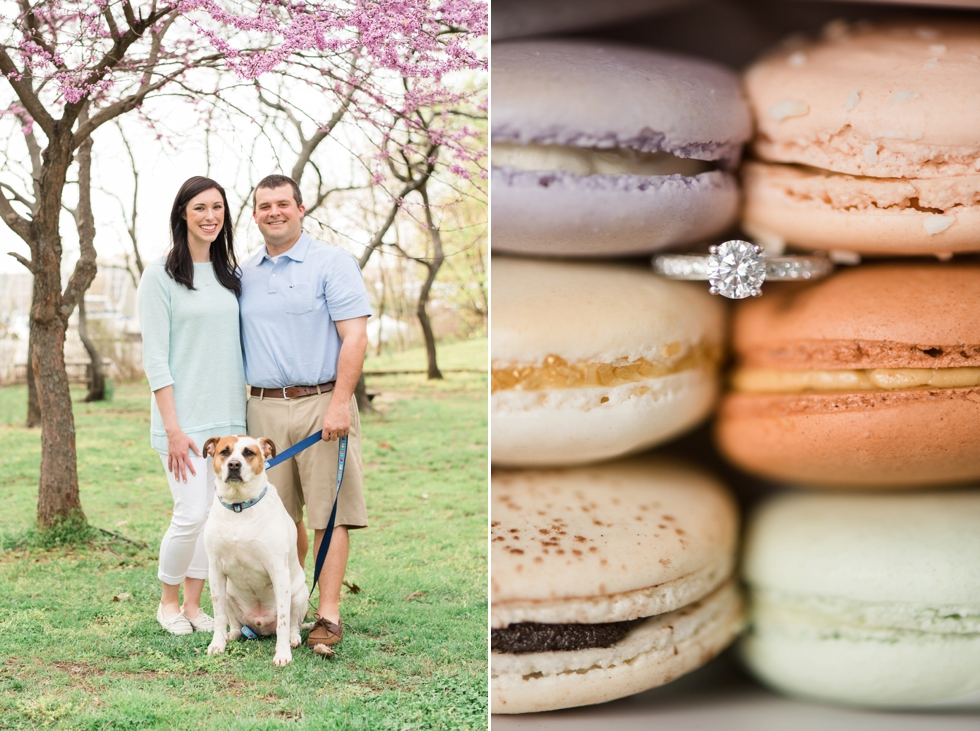 Annapolis Engagement Photographs - Macarons from Sweet Hearts Patisserie - Dog in engagement photos