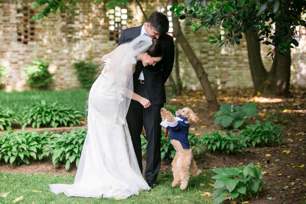 Tidewater Inn Wedding in Easton Maryland - First Look Poodle Puppy