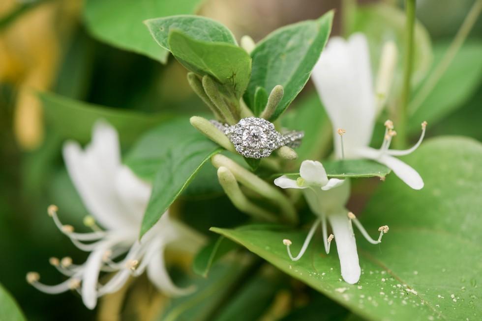 Halo diamond engagement ring on honeysuckle