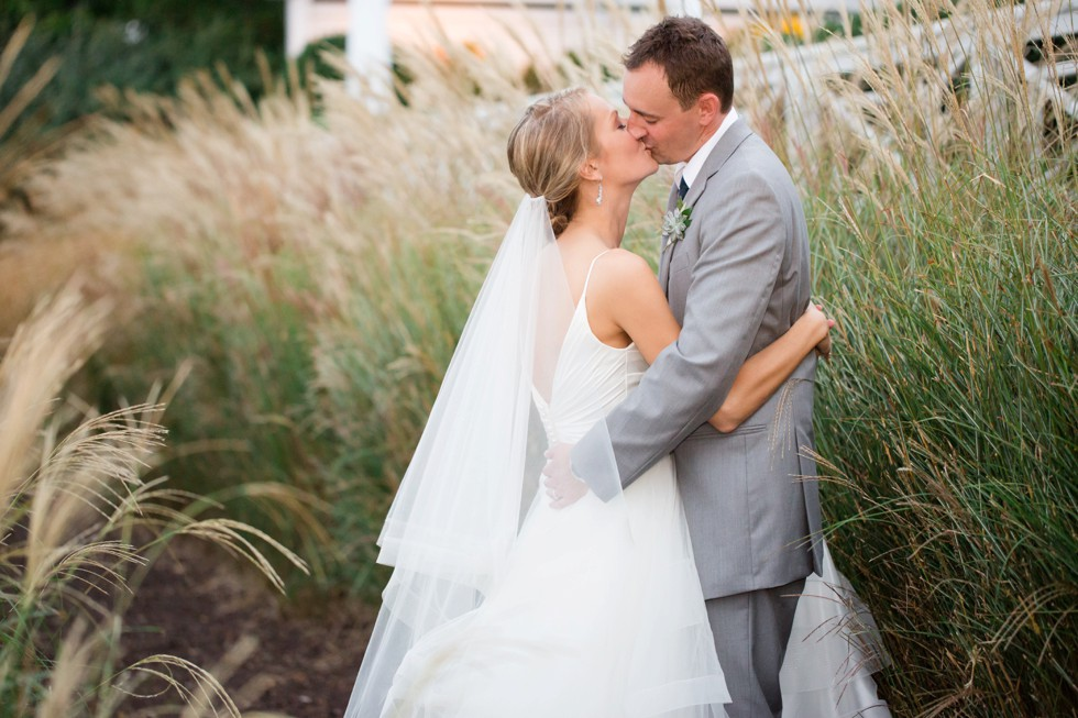 Bride and Groom portraits in the tall grasses at the Chesapeake Bay Beach Club