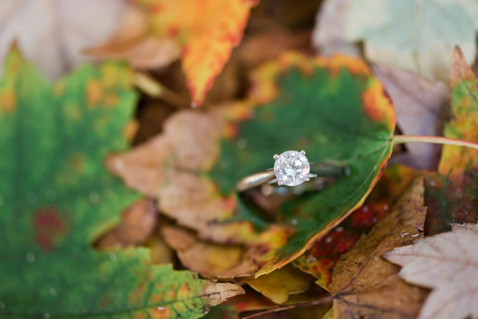 solitaire diamond ring 4 prong on fall leaves