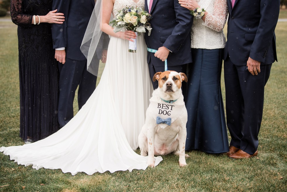 Cape cod family wedding portrait and dog