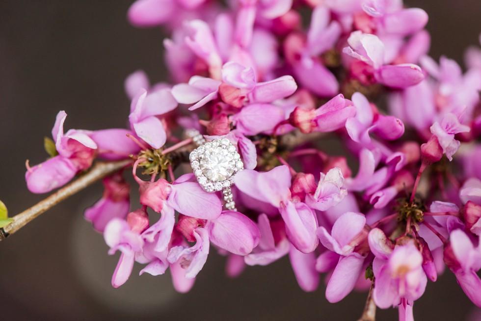 Baltimore engagement rings