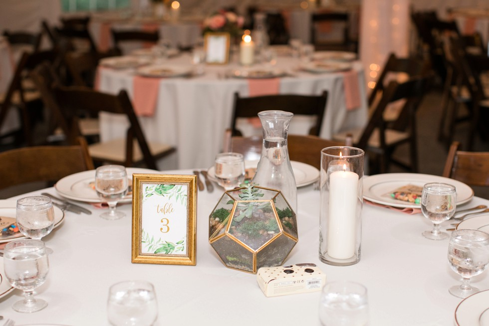 Evergreen Horse stable barn wedding reception