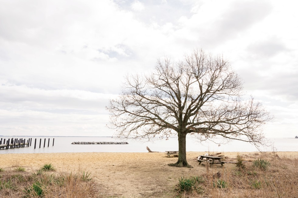 Chesapeake Bay Foundation wedding venue