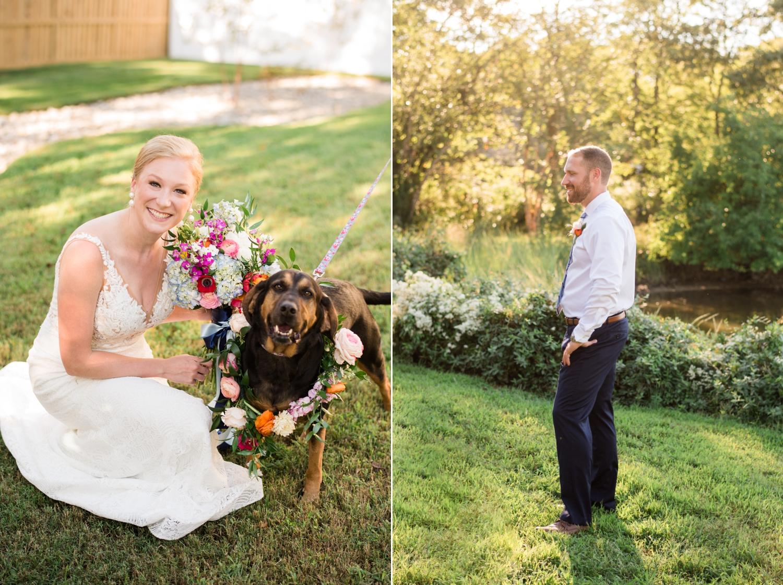 Couple's Dog at a micro wedding