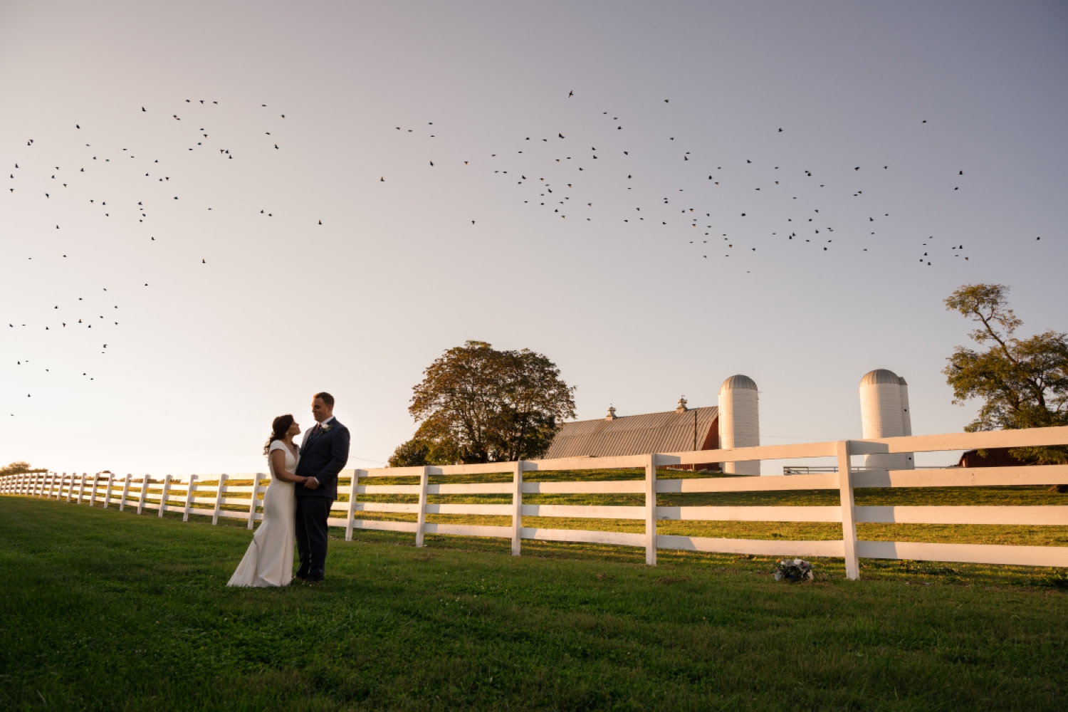 Tusculum Farm field and birds migration wedding photos