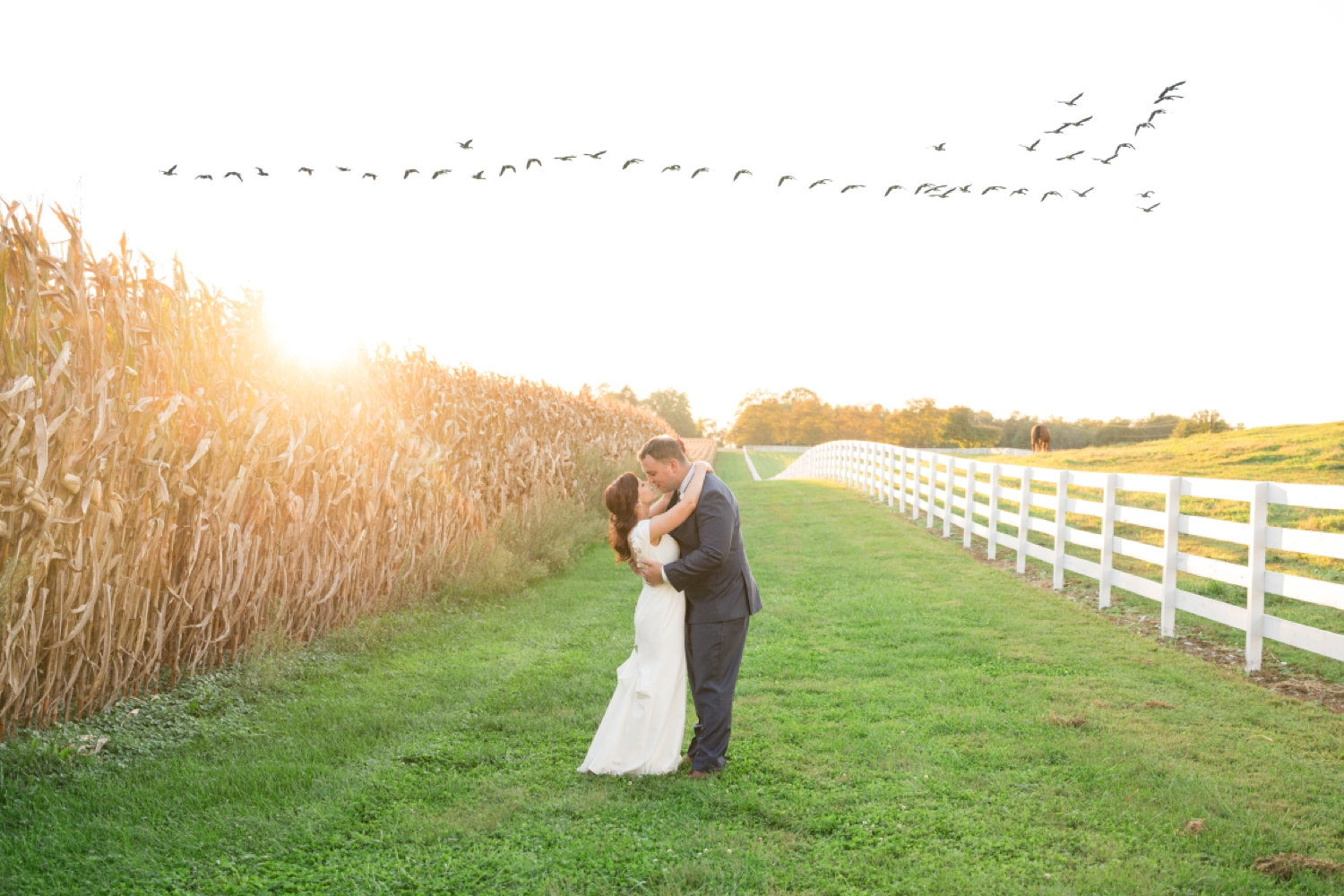 Tusculum Farm field and birds migration fall wedding photos