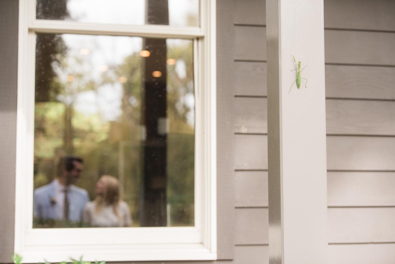 Cockeysville Micro wedding couple in the window