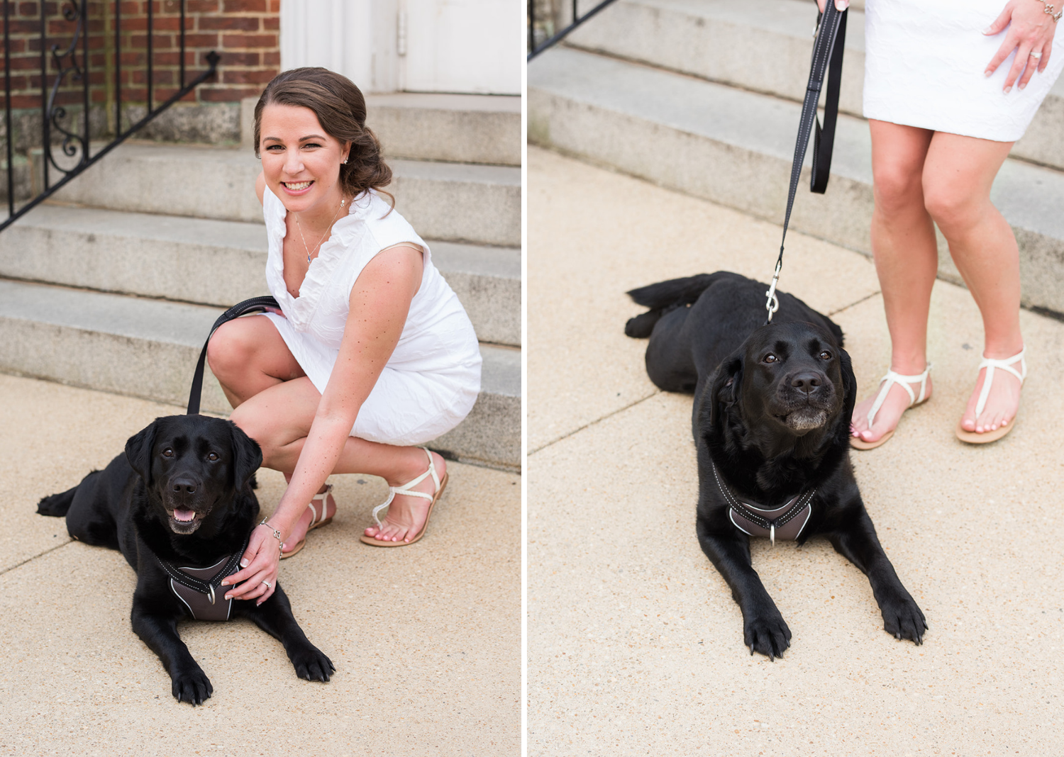 bride posing with her black lab dog